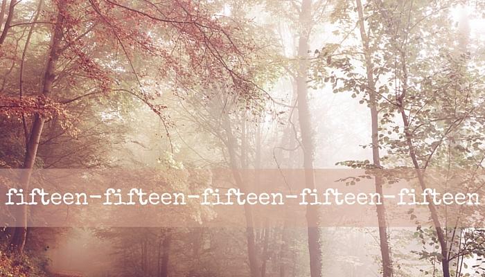 fifteen-november-celebrations