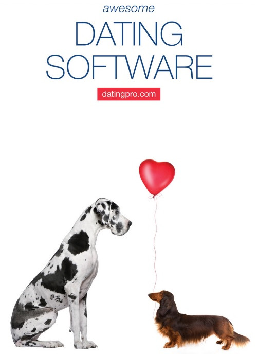 pilot-dating-software-japanese-girls-to-show-there-ass